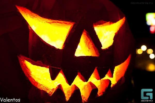 Портфолио организации и оформления Хеллоуина