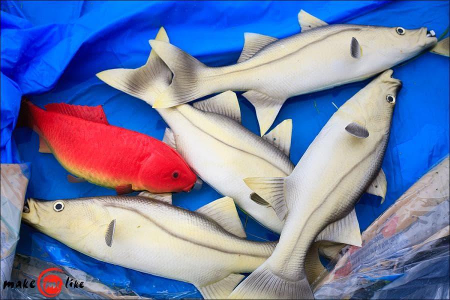 Изготовление бассейна для рыбы
